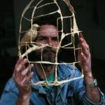 Fikret's birds captive
